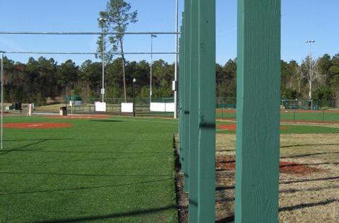 Ripken-batting-cage2